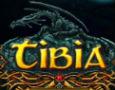 Tibia